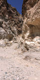 kanjonvinranka nevada Royaltyfria Bilder