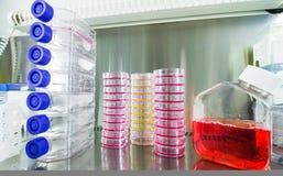 Kankeronderzoekmateriaal stock afbeeldingen