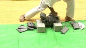 Kanku Карате Kyokushin Dojo Hombu Токио япония видеоматериал