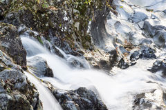 Kanmangafuchi Abyss. A fast flowing river at the Kanmangafuchi Abyss at Nikko Japan Royalty Free Stock Image