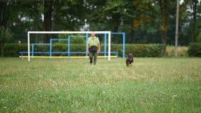 KANN VERFOLGEN Unterrichtende Befehle des Mannes sein Schäferhund stock video