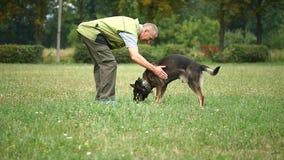 KANN VERFOLGEN Unterrichtende Befehle des Mannes sein Schäferhund stock video footage