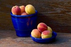 Kanna och bunke med aprikors Arkivfoton
