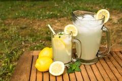 Kanna och exponeringsglas av lemonad utanför Royaltyfri Fotografi