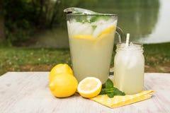 Kanna och exponeringsglas av lemonad vid sjön Royaltyfria Foton