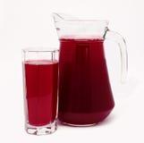 Kanna och exponeringsglas av röd isolerad fruktfruktsaft Arkivfoto