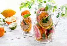 Kanna och exponeringsglas med citrusfrukter Royaltyfri Fotografi