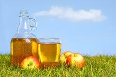 Kanna och halv liter av äppelcider fotografering för bildbyråer