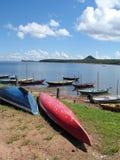 Kano's op de rivier van Amazonië stock afbeeldingen