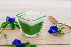 `Kanom Peak Poon Bai Tuey Kati Sod` Thai Sweet. Sweet Pudding, Natural Green Color From Pandan Leaf And Topping With Coconut Milk Cream And Saseme stock image