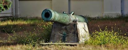 kanon Royaltyfri Fotografi