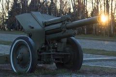Kanon bij het park Stock Afbeelding