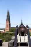 Kanon in Uppsala, Zweden Royalty-vrije Stock Fotografie