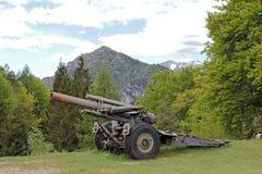 Kanon van de 1st wereldoorlog Stock Foto's