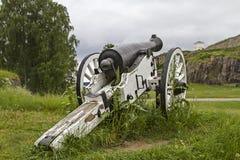 Kanone in Halden Stockfoto