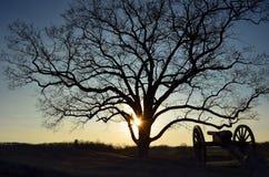 Kanone-Sonnenuntergang-Schattenbild Lizenzfreie Stockbilder