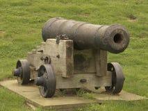 kanonen kriger Royaltyfri Fotografi
