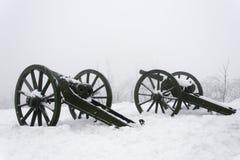 Kanoner Fotografering för Bildbyråer