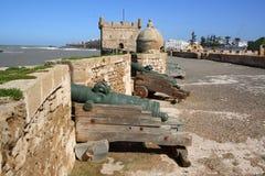 Kanoner på stadsväggar Royaltyfri Foto