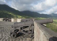 Kanoner som bevakar fästningen Arkivbilder
