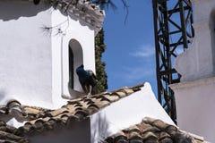 Kanoni, l'église de Panagia Vlacherna et l'île de souris sur l'île grecque de Corfou Photos stock