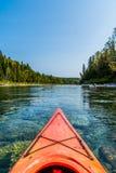 Kanot vid den Bonaventure floden Royaltyfria Foton