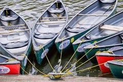 Kanoter för hyra arkivfoto