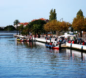 Kanoter i Aveiro, Portugal arkivbild