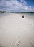 Kanoter på en sandbank arkivbild