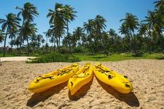 Kanotkajakfartyg på den soliga tropiska stranden med palmträd Royaltyfri Fotografi