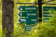 Kansas City Zoo Signs. Signs in the zoo that point to the path for seeing orangutans, red panda, tigers, polar bear and other family attractions stock photos