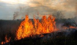Kansas Prairie Fire Royalty Free Stock Photo