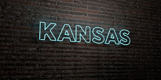 KANSAS -Realistic Neon Sign on Brick Wall background - 3D rendered royalty free stock image Stock Images