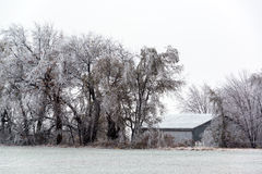 Kansas Under Ice. Rural Kansas after an ice storm near the town of Burrton Royalty Free Stock Photography