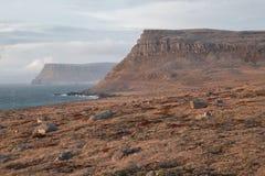 Kant av den Europa - Westfjords kusten, Island Arkivbilder