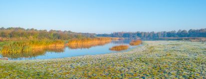 Kant av en sjö i solljus på nedgången Arkivbild