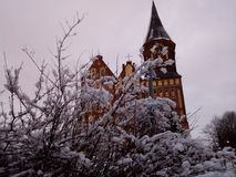 Kant Island The Cathedral de Kaliningrad images libres de droits
