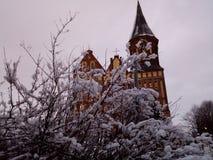 Kant Island The Cathedral von Kaliningrad lizenzfreie stockbilder