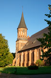 Kant's cathedral in Kaliningrad Stock Images