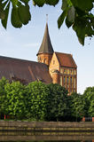 Kant's cathedral in Kaliningrad Royalty Free Stock Photo
