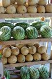 Kantaloep en Watermeloen Stock Afbeeldingen