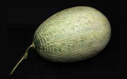 Kantalup na tle - zdrowa naturalna owoc obraz stock