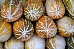 Kantalup owoc tło zdjęcie stock