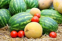 kantalupa pomidorów arbuz Zdjęcia Stock