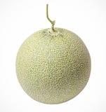 Kantalupemelonen getrennt Stockbild