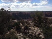 Kanten av Grand Canyon arkivfoto