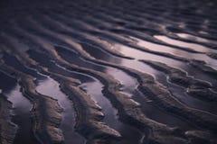 Kanten des Sandes auf dem Ufer stockfotografie