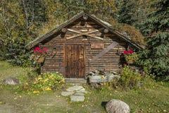 Kantishna金矿区的历史的草皮屋顶原木小屋记录器办公室,大约1905年, Kantishna,阿拉斯加, Denali全国Pa 图库摄影