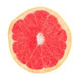 kantjusterad köttgrapefruktred Arkivbilder
