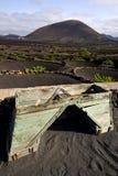 Kantjusterar för den geria för vinodlingSpanien la barren för odling för skruven vinrankan Arkivfoton